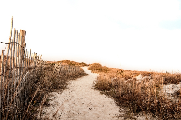 Gorgeous beach photos reign sum - heathcandero | ello