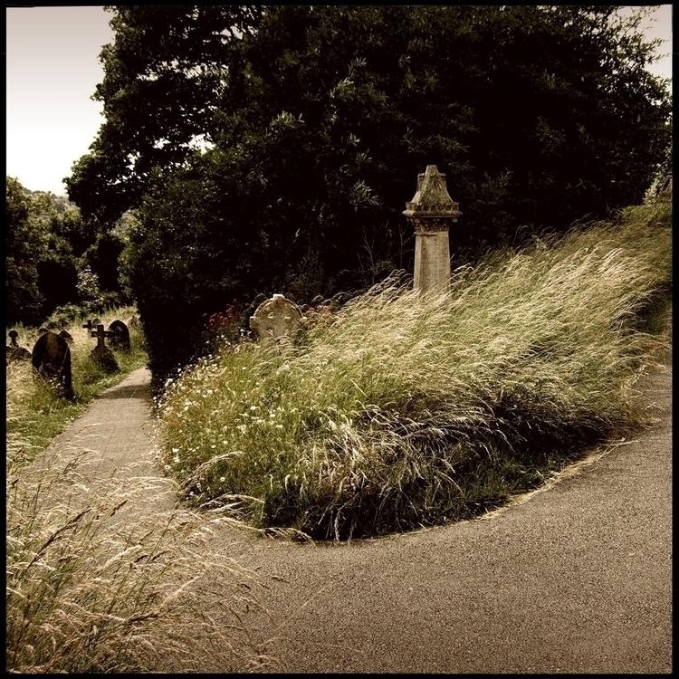 Simon walk countryside - 41. - danhayon | ello