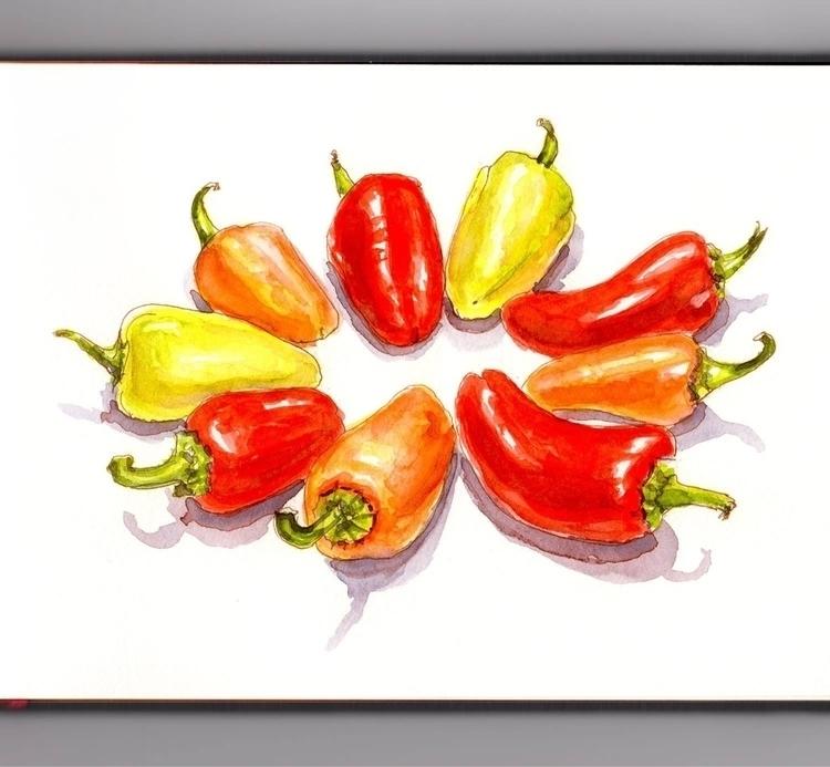 - Day 23 Favorite Vegetable - WorldWatercolorGroup - doodlewash | ello