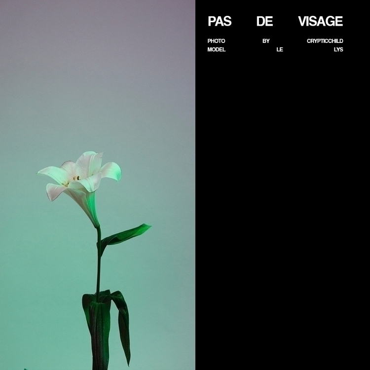flower, gels, lillie, green, violet - cryptic_child | ello