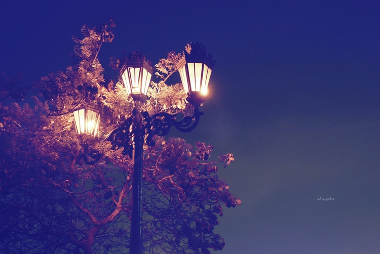 golden thoughts find - elnoos | ello