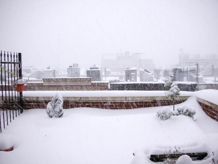 [biggest snow storm February 20 - oliverbo   ello