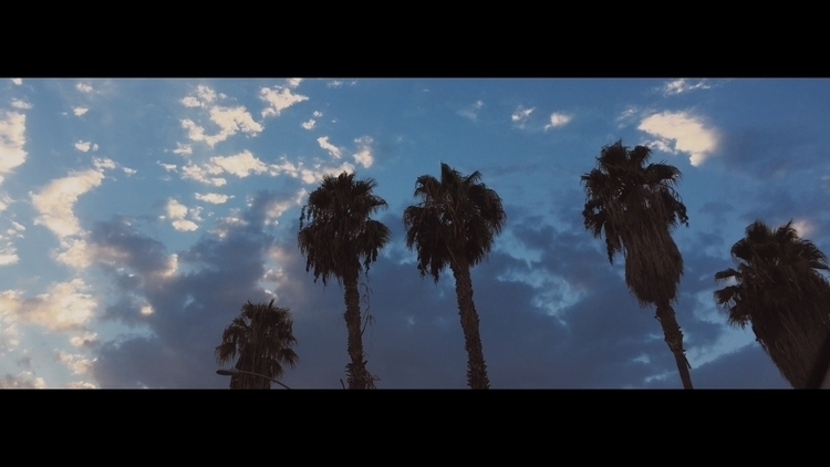 Melrose Avenue - photography, cinematography - juanabad | ello