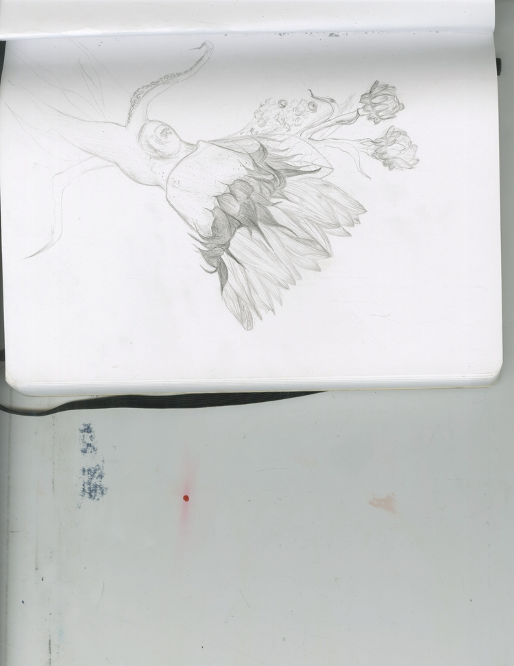 sketch1 - sarahmcmillan | ello