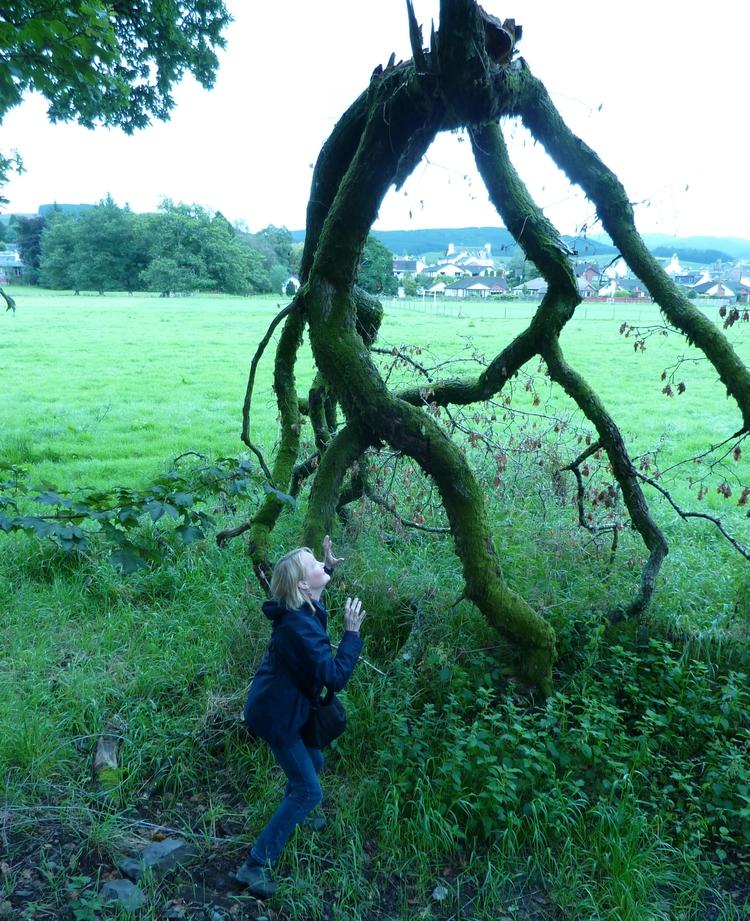 Monster tree branch - trees, monster - firehorsetextiles | ello