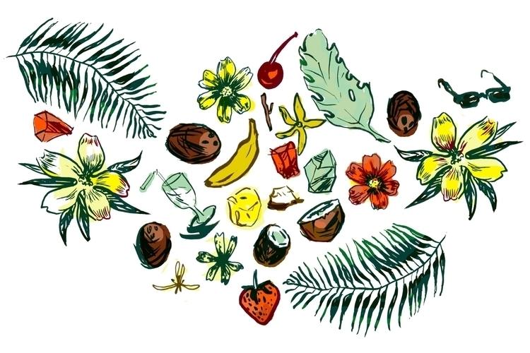 pinacolada, coconut, tropical - l8b | ello