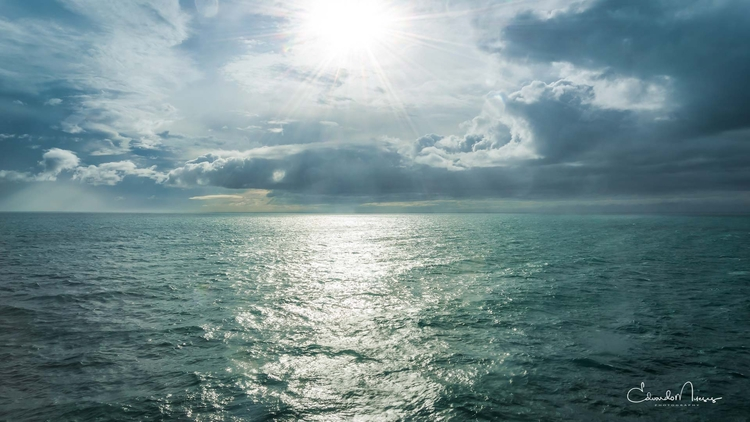 Oceanus | [Ello](http://ello.co - photografia | ello