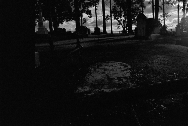 light. Kyogle Cemetery, Kyogle - dropshot | ello