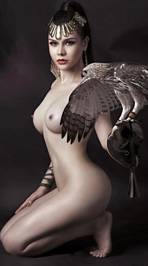 brunette, tits, falcon, hawk - ukimalefu | ello