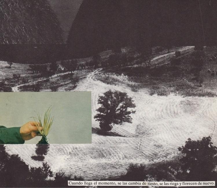 Participo con este collage hech - annitaklimt | ello