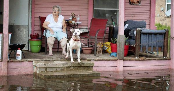 Houston Texas increase greenhou - ferdiz | ello