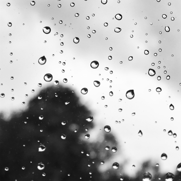 rain arrives - photography, blackandwhite - davidhawkinsweeks | ello