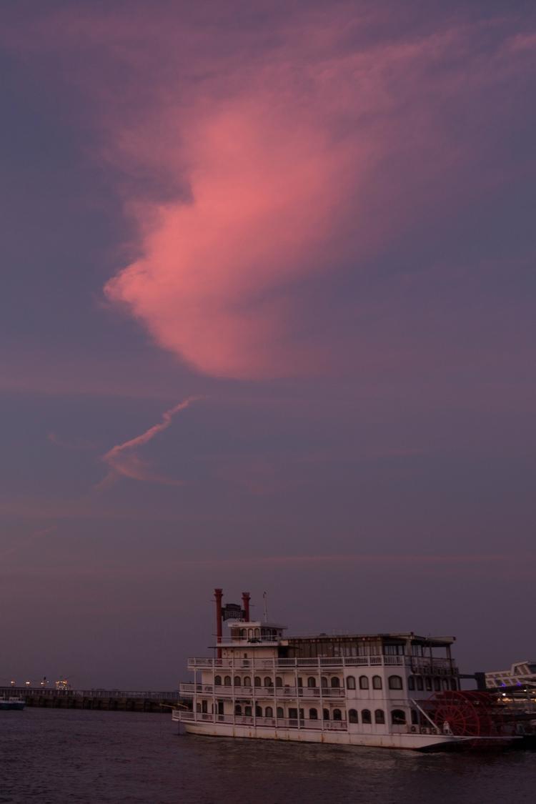 days feel drifting wind pink fl - viva_animania | ello