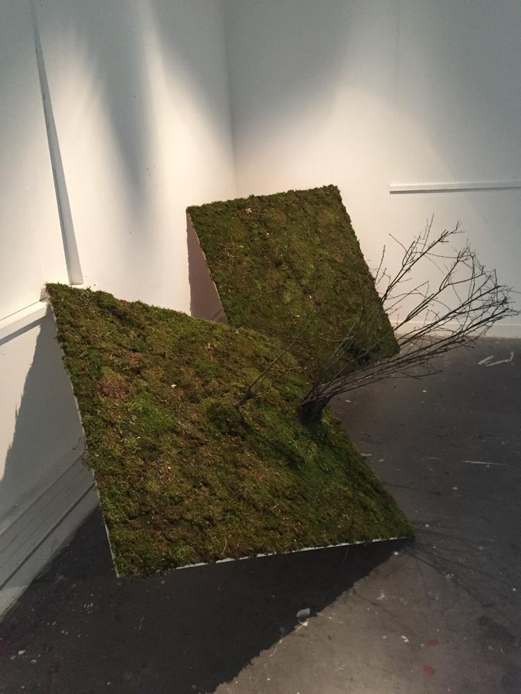 Grass - perybastien | ello