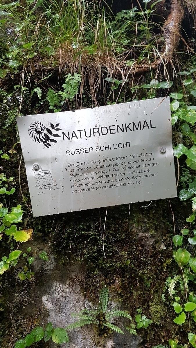 Hiking. Bürser Schlucht (Canyon - rowiro | ello