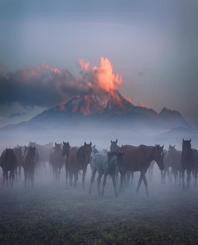 Incredible Photography Cuma Cev - photogrist   ello