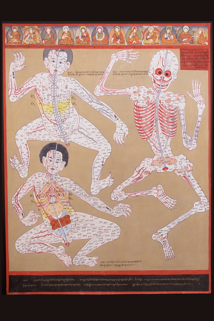 Tibetan Medicine Thangka, scrol - valosalo | ello