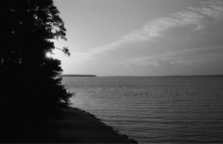 Bay River, Vandemere, NC - analog - flaneurity | ello