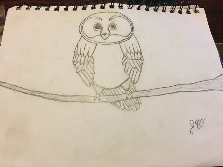 drawing post elf owl small bran - gryphffin | ello