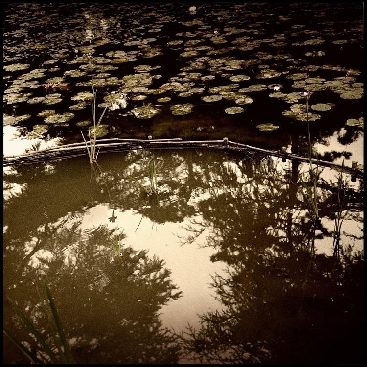 Simon walk countryside - 54. - danhayon | ello