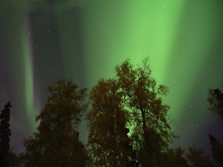 aurora night. Fairbanks, Alaska - lwpetersen | ello