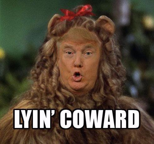 Caturday, LyingCoward, ImpeachTrump - robogiggles | ello
