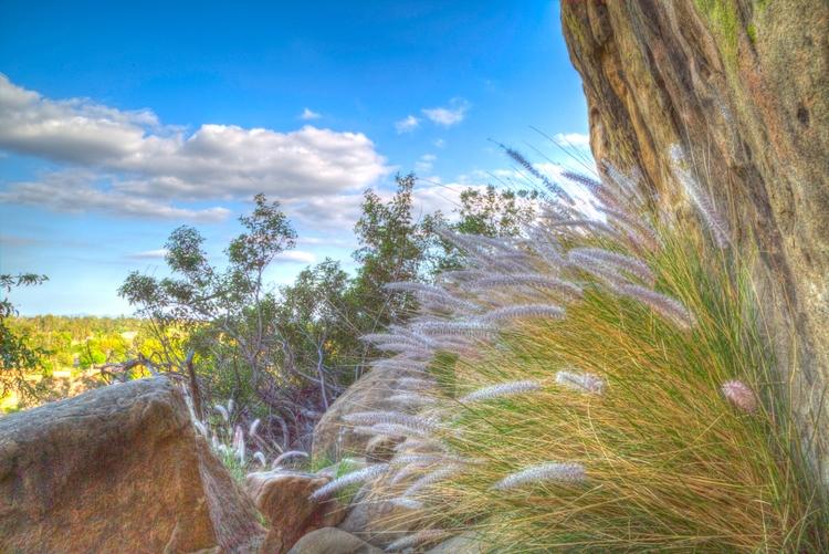 landscape Stoney Point Park, Ch - ellomaggie | ello