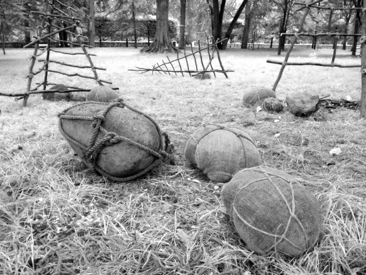 II Festiwal Land Art Park Kozłó - matyjaszewski | ello