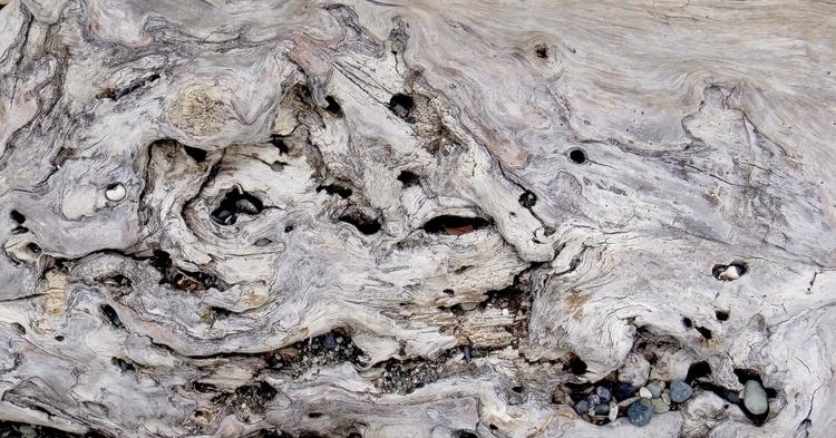 Driftwood Embedded Stones Port  - dave63 | ello