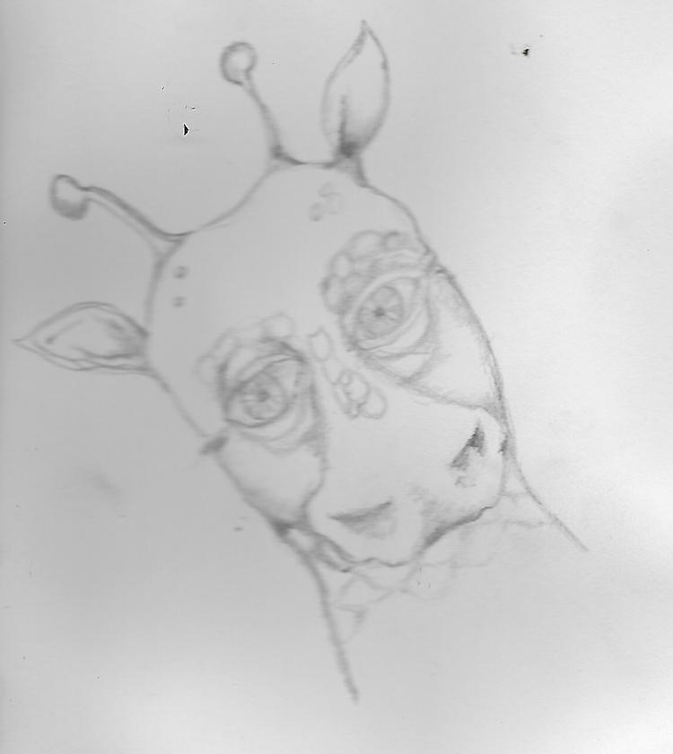 Dragon doodle Friday night - krickenwood | ello