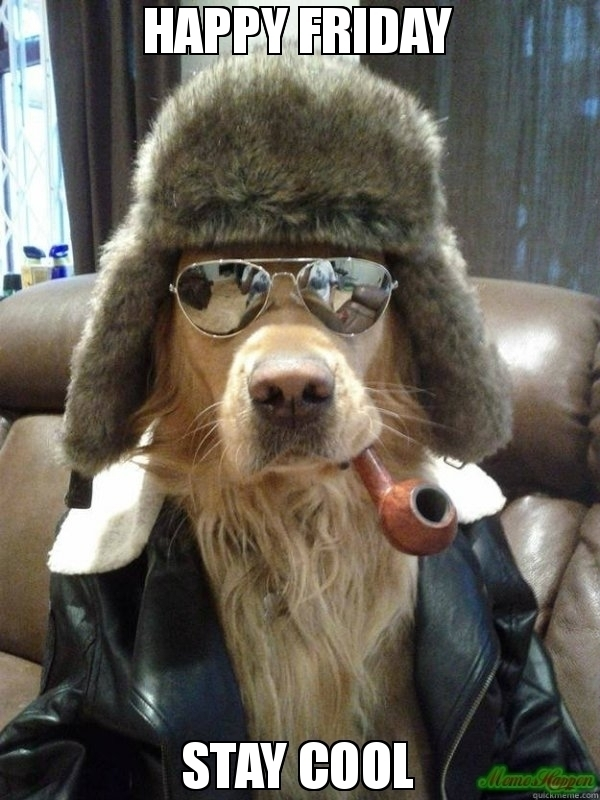 happyfridaydogs, dogs, doglover - rxmobility | ello