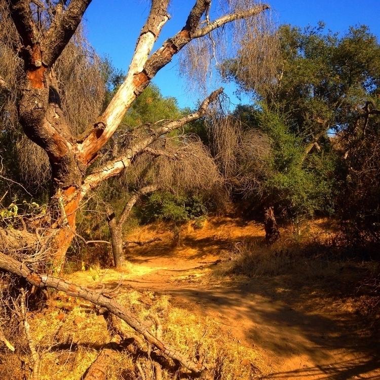 Avoid trails masses. Find direc - alexgzarate | ello