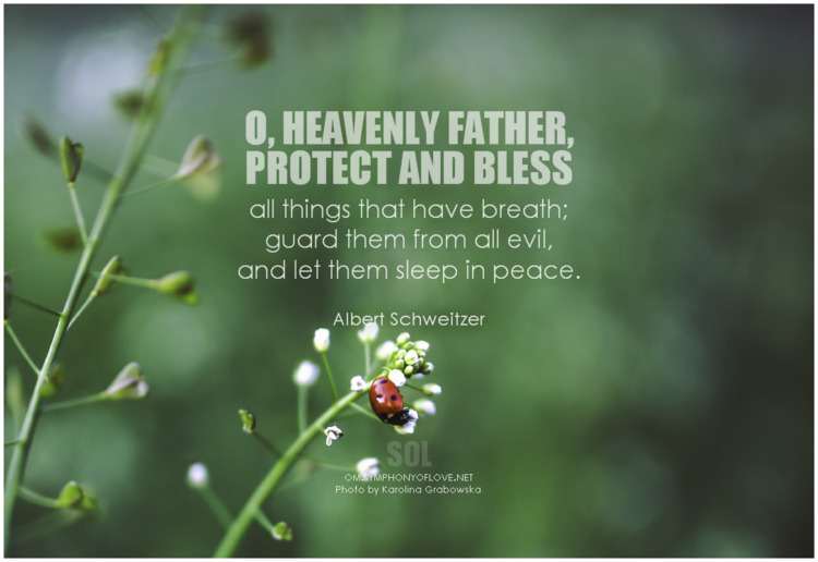 heavenly Father, protect bless  - symphonyoflove | ello