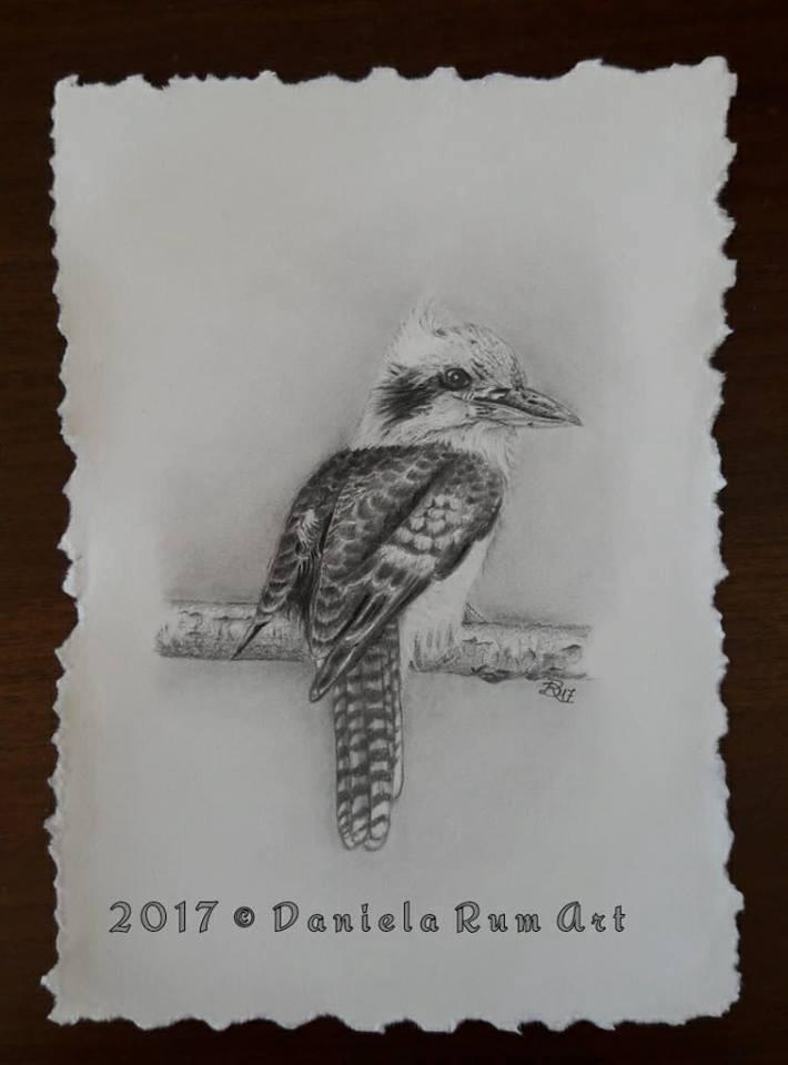 Kookaburra Graphite Arches pape - daniela_rum | ello