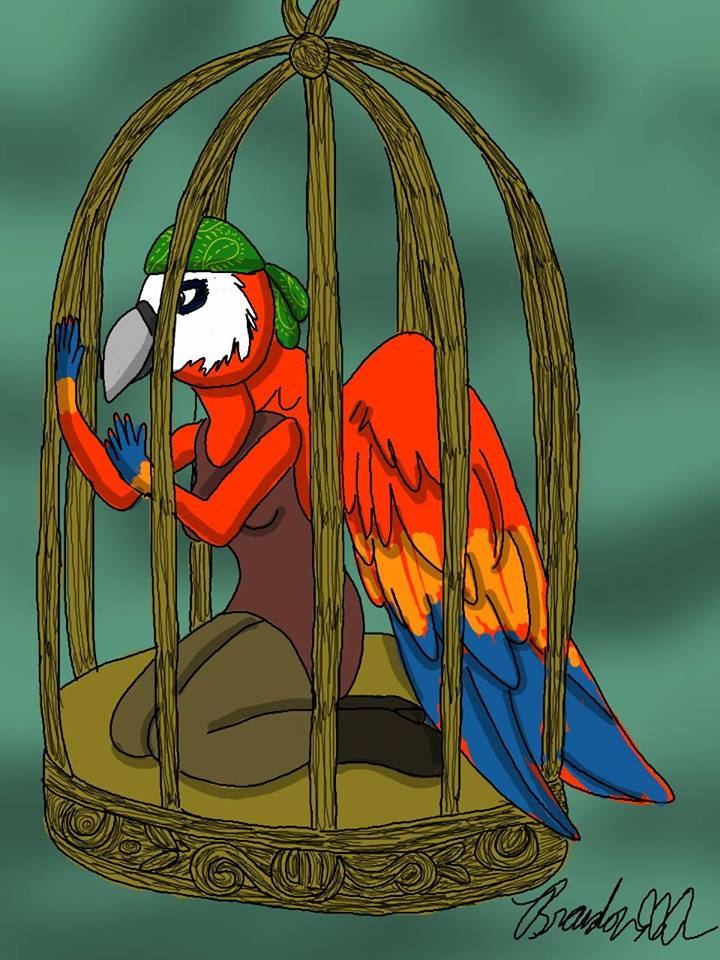 pirate parrot character cage he - brandon_omega-x | ello