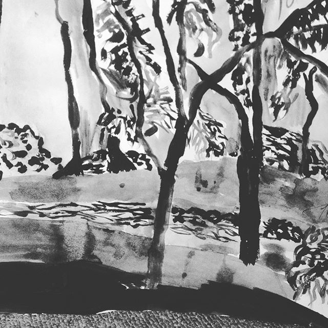 Forest Trees Nature - loveartwonders   ello
