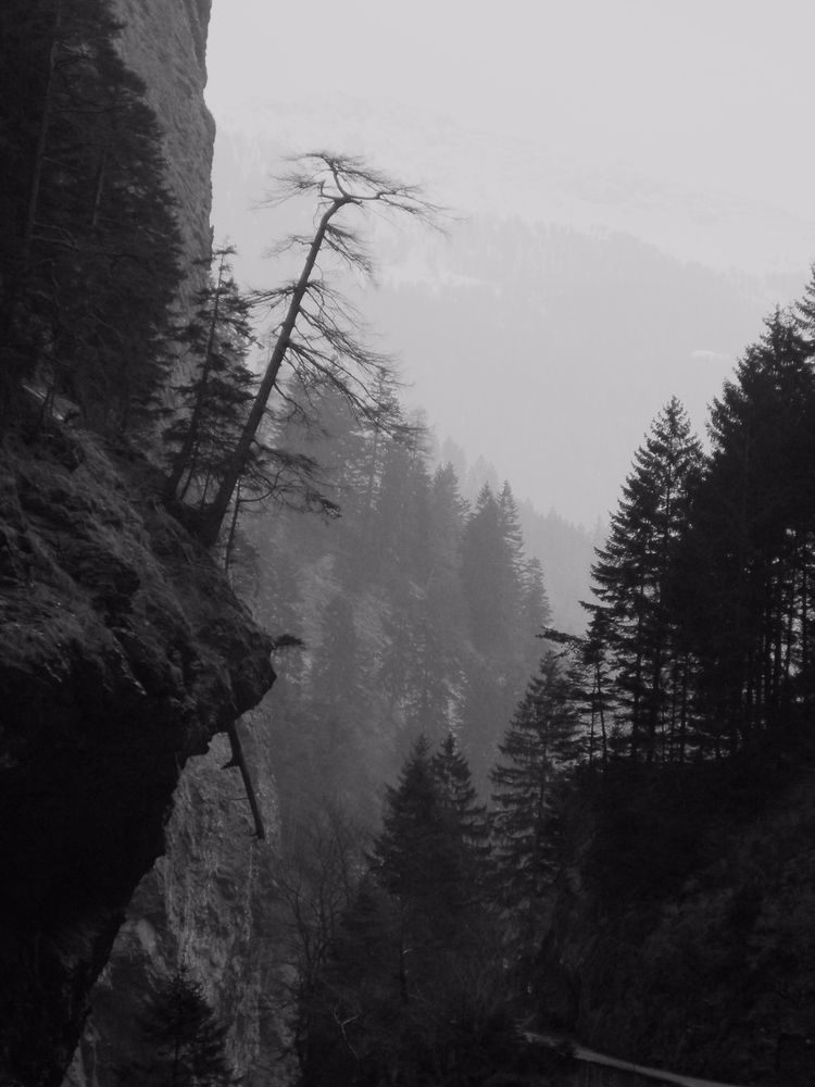 Switzerland, photography, nature - ivop | ello