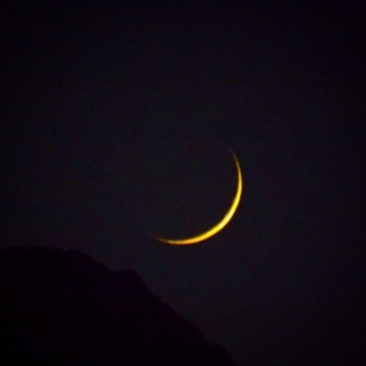 week concludes night lowers lan - alexgzarate | ello