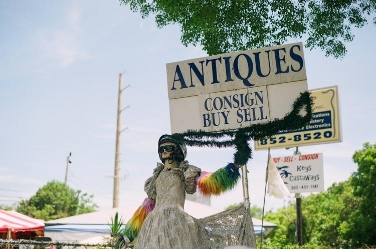 Tavernier, Florida Keys 2017 - photography - annajacobson | ello