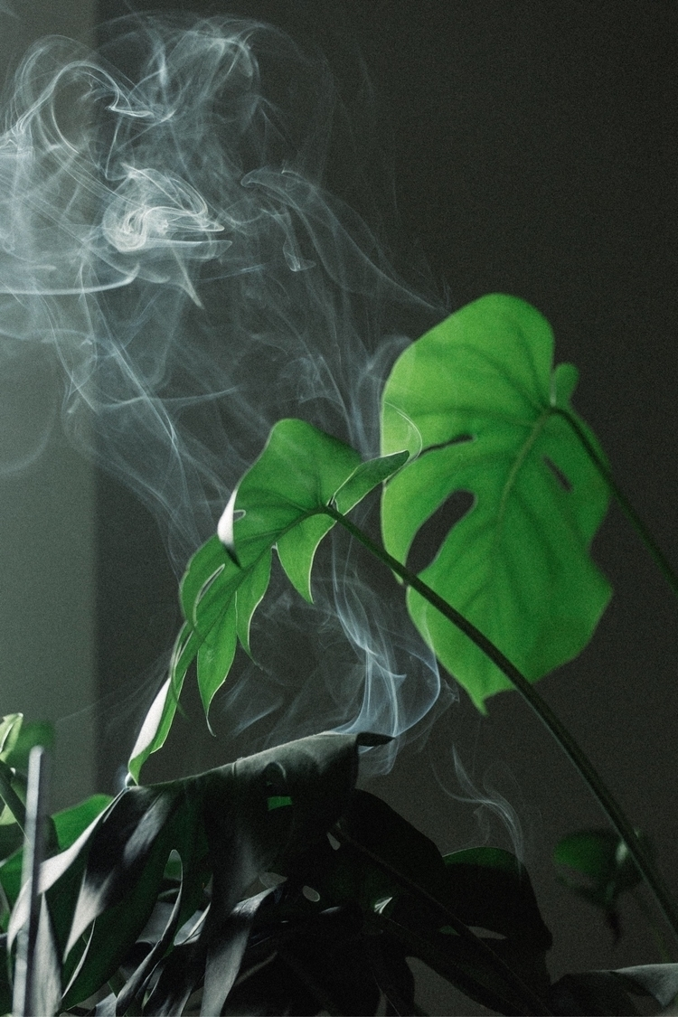 Incense \\ Ritual - brandonscottherrell | ello
