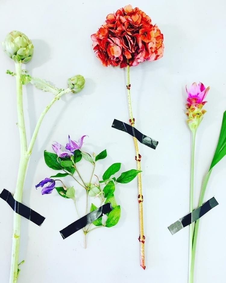 Testing dried flowers - bloomshoorn | ello
