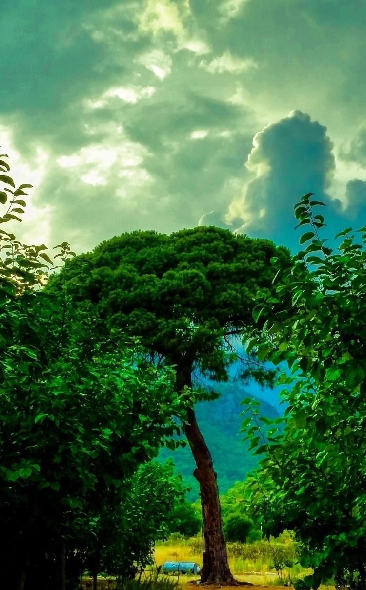 beatiful places world,Antalya-Ç - yabanyolu | ello