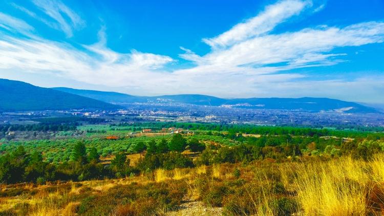 Blue sky, yellow fields, green  - yabanyolu | ello