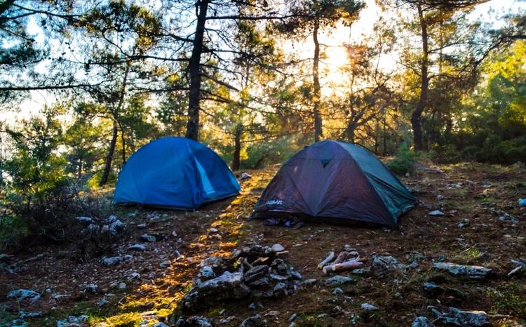 hill, tree, Road - camping, trekking - yabanyolu | ello