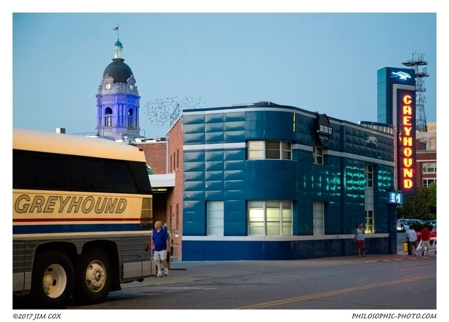 Greyhounds - greyhound, greyhoundbusstation - jascox | ello