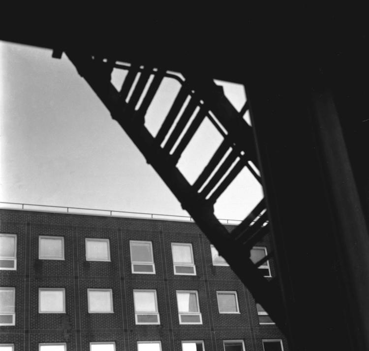 4x5 Large Format Film - blackandwhite - annajacobson | ello
