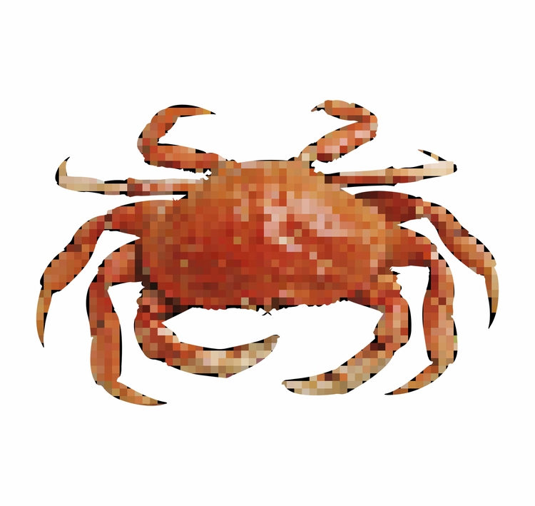 art, crab, pixelated - hug-fliesparadise | ello