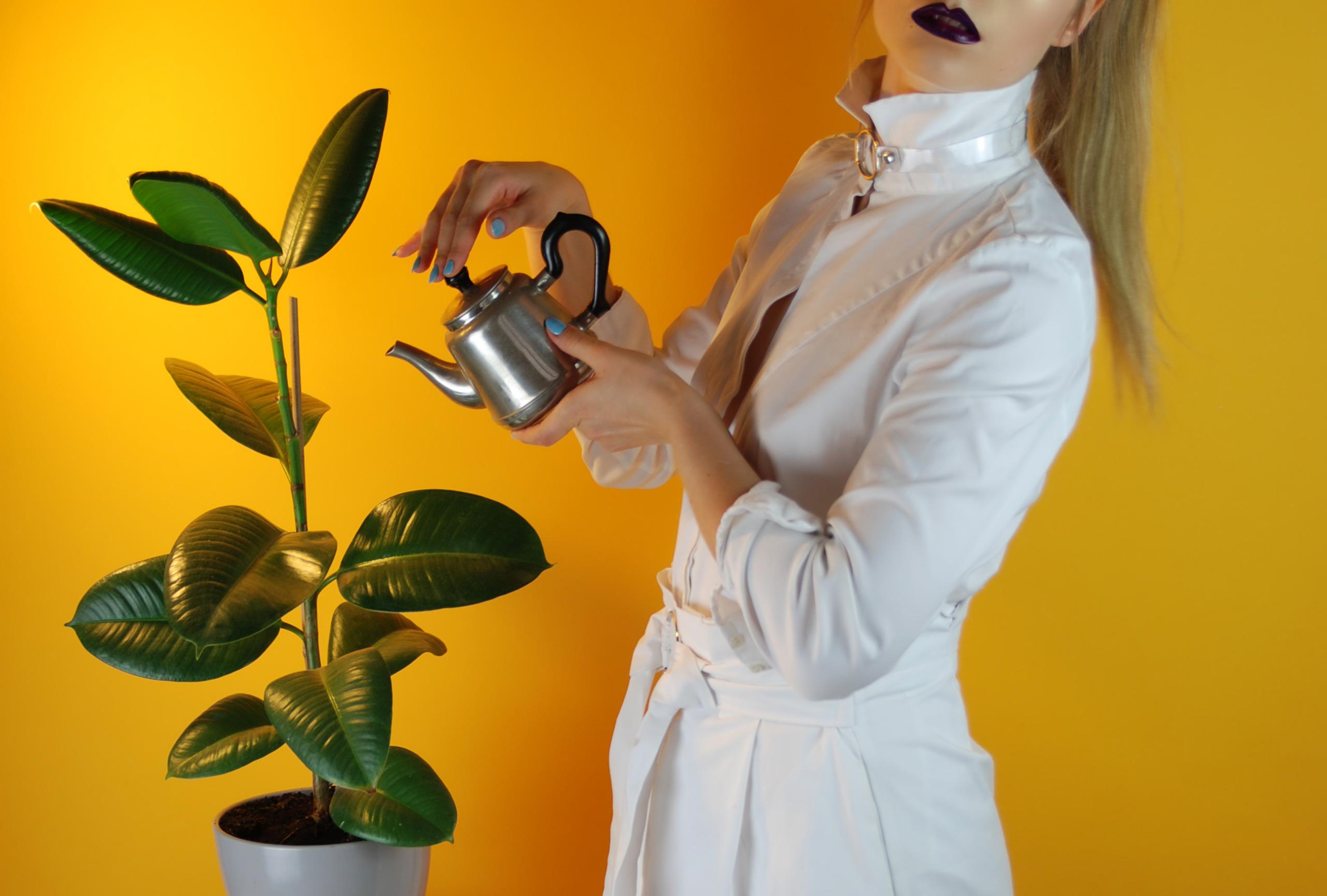 Zdjęcie przedstawia kobietę ubraną na biało, na żółtym tle. Kobieta trzyma w ręku srebrne naczynie i podlewa roślinę, która znajduje się z lewej strony.