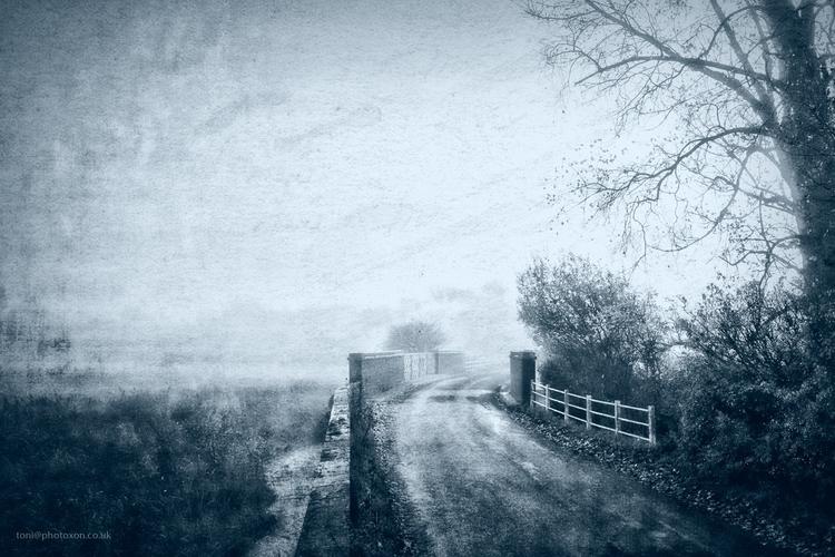Black white colour - Somerton, rural - toni_ertl   ello