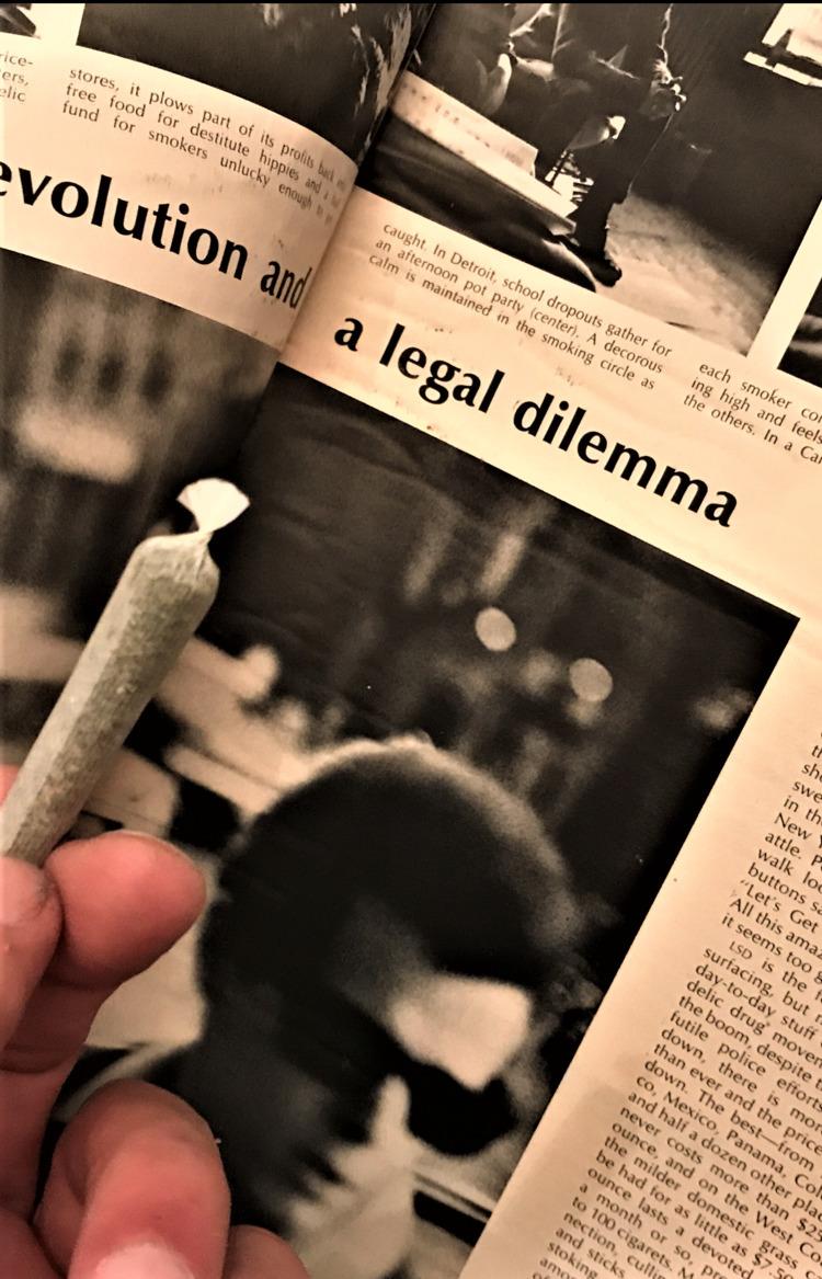 cannabis, ellocannabis, originalphoto - ellocannabis   ello